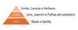 pirâmide olfativa flor de laranjeira via aroma aromatização ambientes