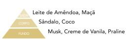 pirâmide olfativa vanilla via aroma aromatização ambientes