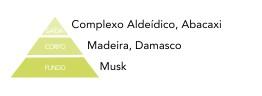 pirâmide olfativa maçã verde via aroma aromatização ambientes
