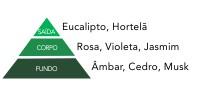 pirâmide olfativa eucalipto e hortelã via aroma aromatização ambientes